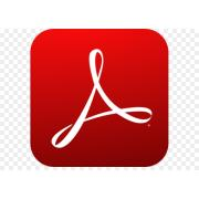 Acrobat Professional 2017 Multiple Platforms Russian AOO License TLP